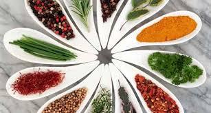 کارگاه آموزشی پرورش گیاهان دارویی