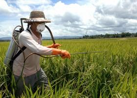 عواقب مصرف بی رویه ی سموم کشاورزی