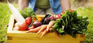 خوراکی های ارگانیک